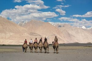 Hunder Sand Dunes, Nubra Valley, Ladakh, India